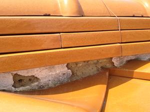 ビフォーアフター 屋根漆喰補修工事